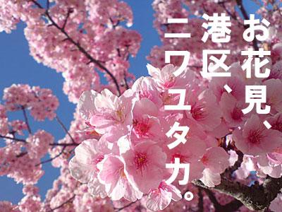 080406_hanami.jpg